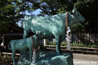 石切劔箭神社(東大阪市東石切町)45