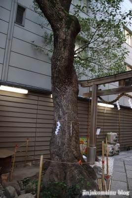 少彦名神社(大阪市中央区道修町)5
