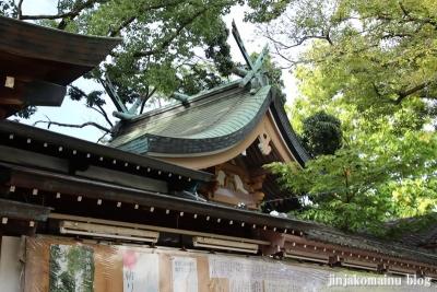 素盞嗚尊神社(大阪市東住吉区鷹合)11