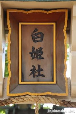 素盞嗚尊神社(大阪市東住吉区鷹合)7