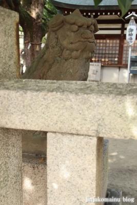 素盞嗚尊神社(大阪市東住吉区鷹合)28