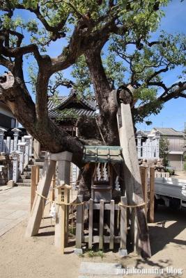 高崎神社(大阪市住之江区南加賀屋)43