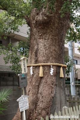 阿倍王子神社(大阪市阿倍野区阿倍野元町)36