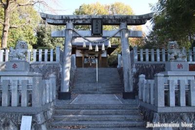 八坂神社  (相模原市緑区下九沢)5