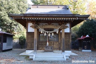 八坂神社  (相模原市緑区下九沢)7
