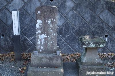八坂神社  (相模原市緑区下九沢)11