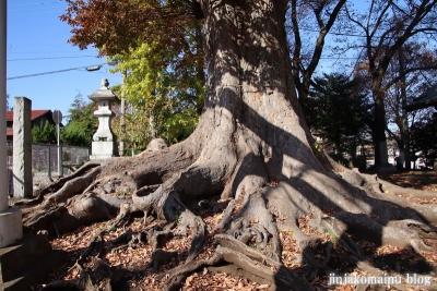 八坂神社  (相模原市緑区上九沢)2