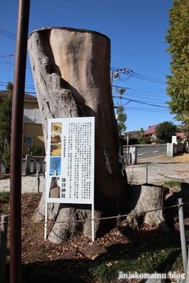 諏訪神社  (町田市相原町)7