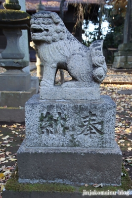 柳窪天神社  (東久留米市柳窪)10