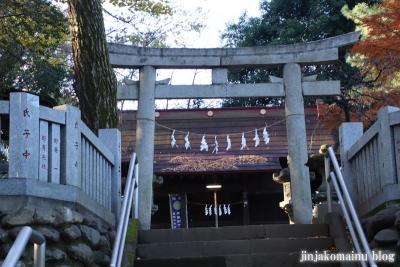 柳窪天神社  (東久留米市柳窪)4
