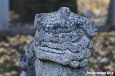 柳窪天神社  (東久留米市柳窪)19