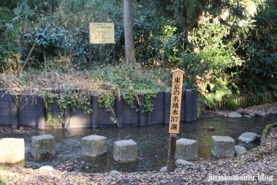 柳窪天神社  (東久留米市柳窪)21