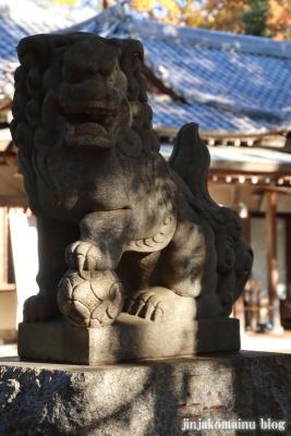 南大沢氷川神社(東久留米市南沢)2