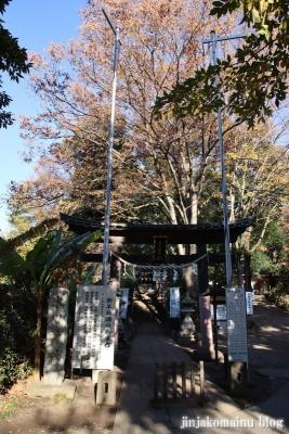 南大沢氷川神社(東久留米市南沢)13