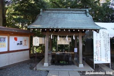 南大沢氷川神社(東久留米市南沢)5