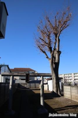 稲荷神社(東久留米市八幡町)1
