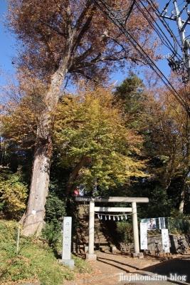 子ノ神社(東久留米市小山)1