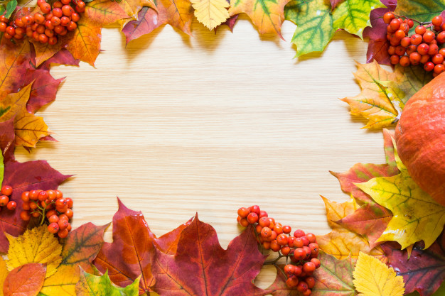 border-autumn-leaves-pumpkin-rowanberry-wooden-board-copy-space-fall-concept_91908-1278.jpg