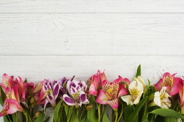 flower-decor-wooden-background_105565-2157.jpg