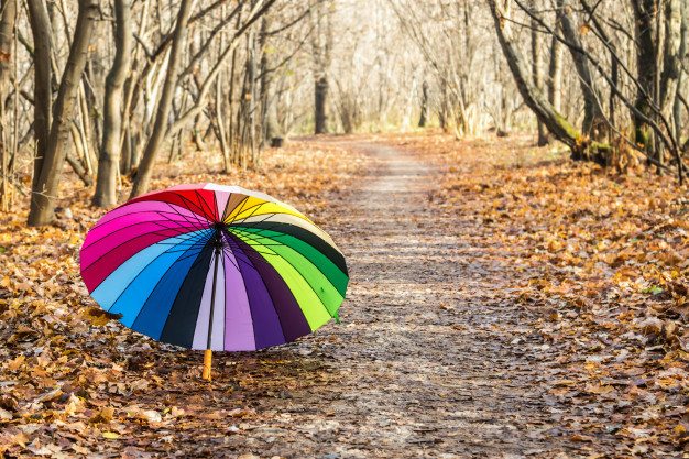 multi-colored-umbrella-rests-fall-leaves_128406-130.jpg