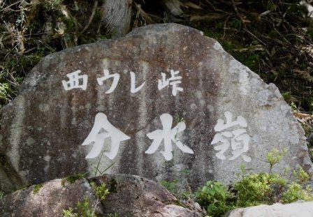 654-05.jpg