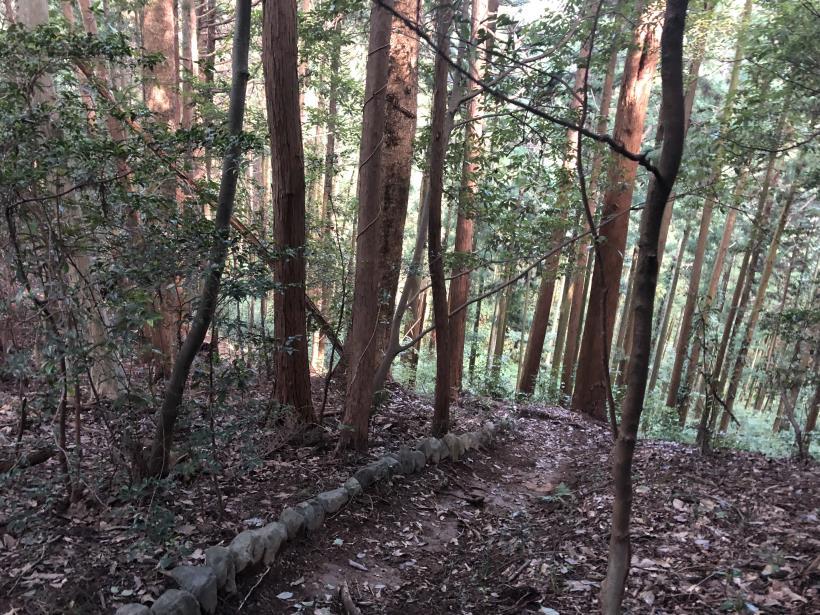 吉野梅里取りこぼしコース34