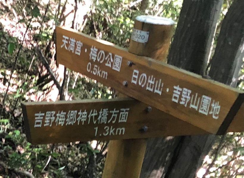 神代橋方面分岐