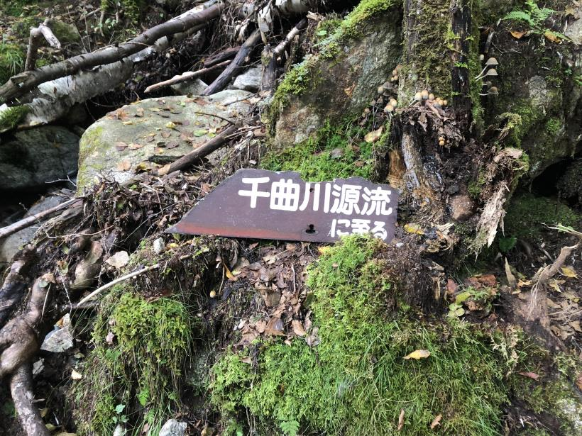 甲武信ヶ岳118