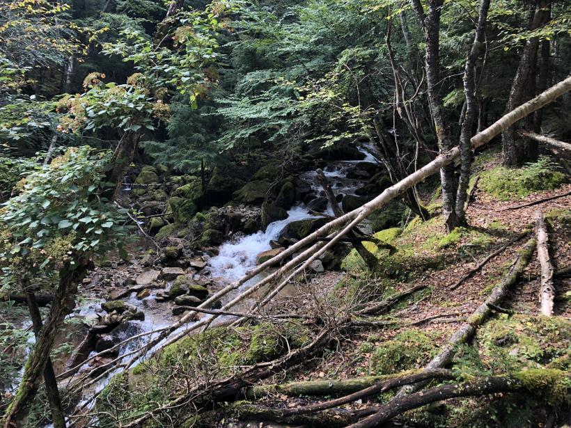 甲武信ヶ岳124