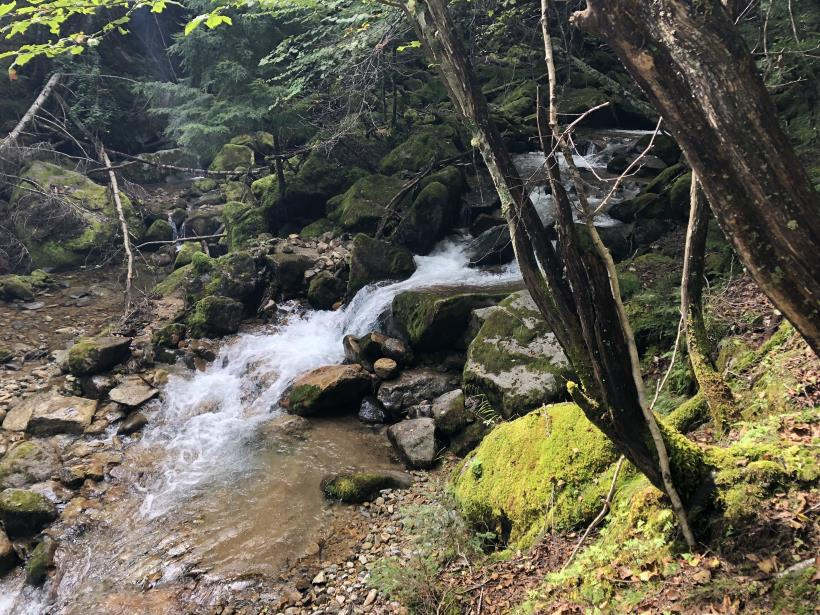 甲武信ヶ岳125