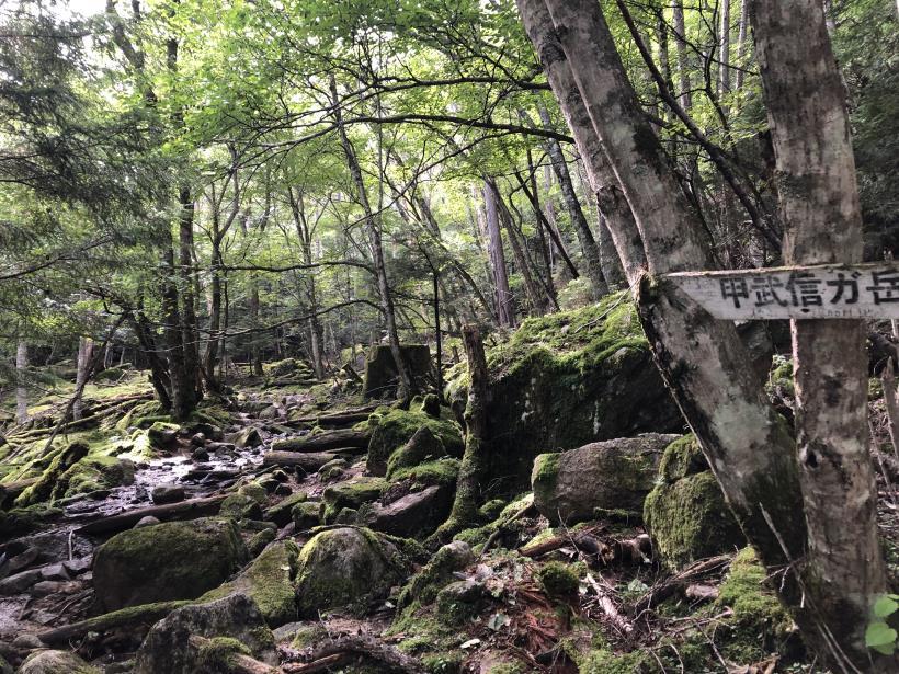 甲武信ヶ岳136