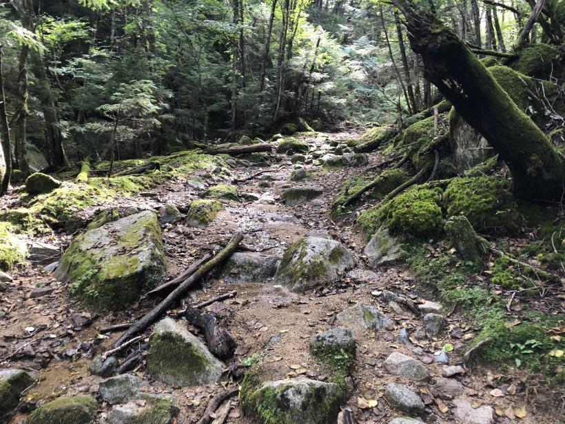 甲武信ヶ岳138