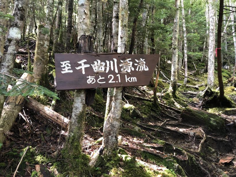 甲武信ヶ岳162
