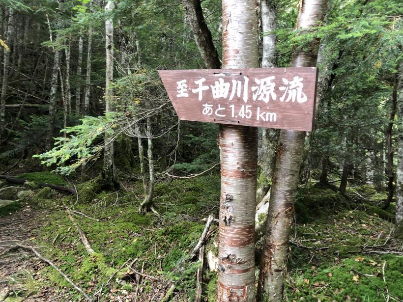 甲武信ヶ岳182