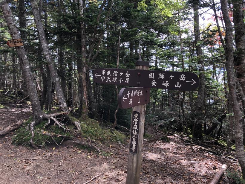 甲武信ヶ岳278