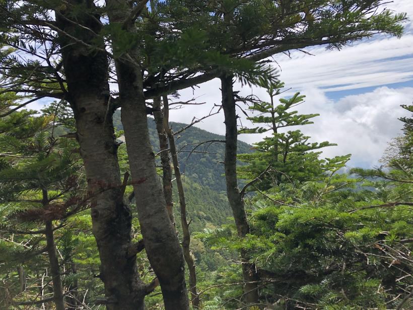 甲武信ヶ岳288