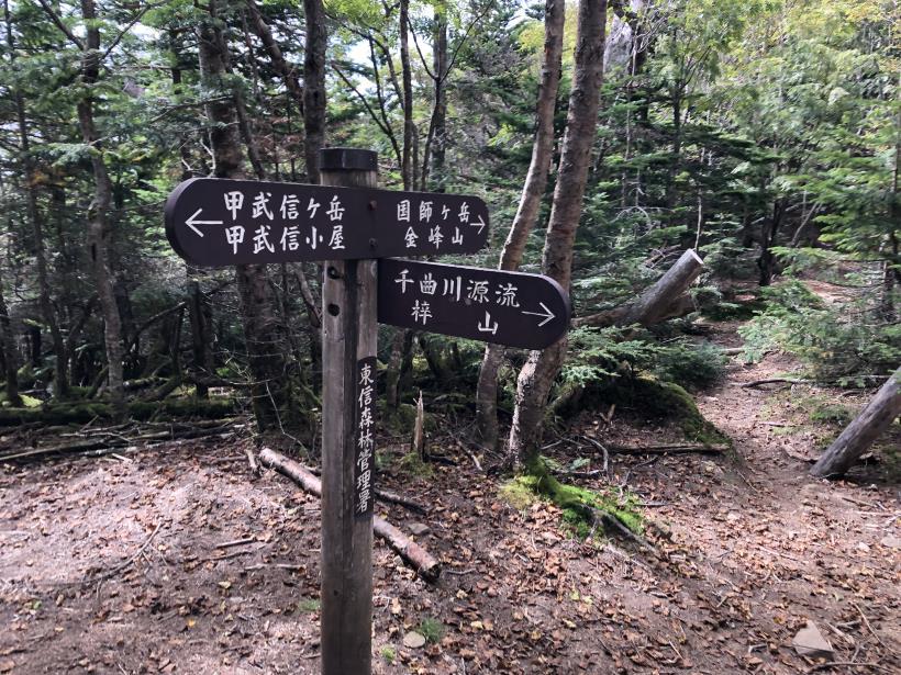 甲武信ヶ岳341