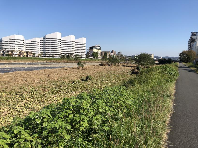 浅川CR復旧状況12