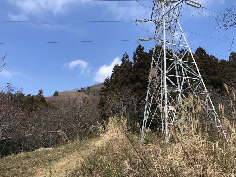 津久井湖城山03