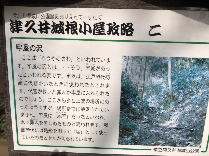 津久井湖城山11