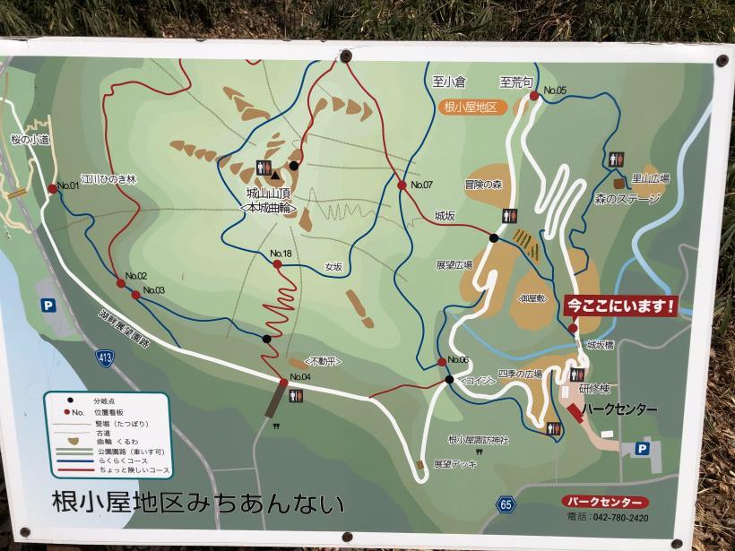 津久井湖城山13