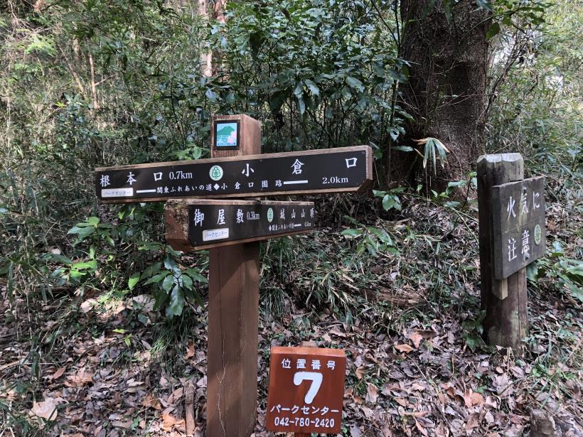 津久井湖城山20