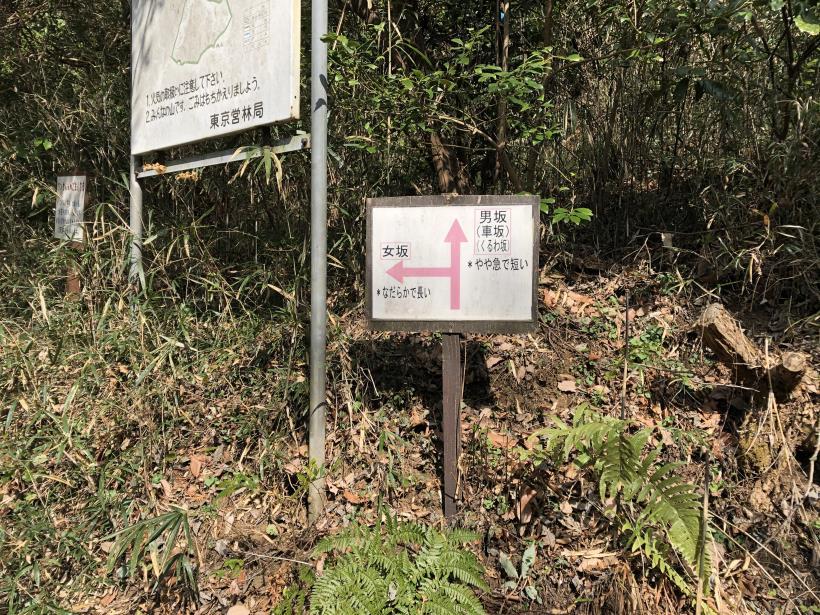 津久井湖城山21