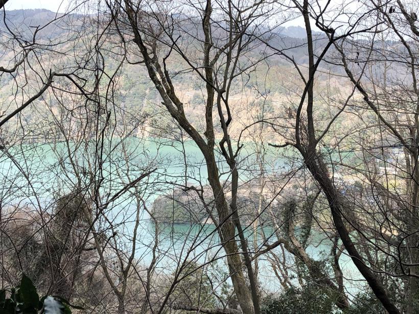 津久井湖城山28