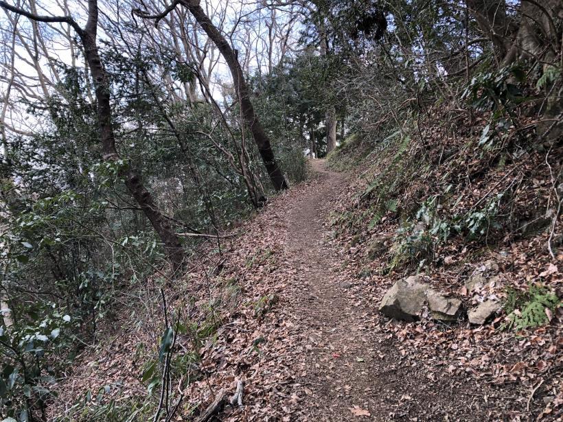 津久井湖城山29