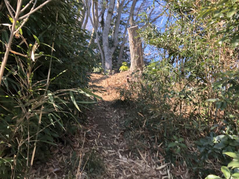 城山登山口から鷹射場21