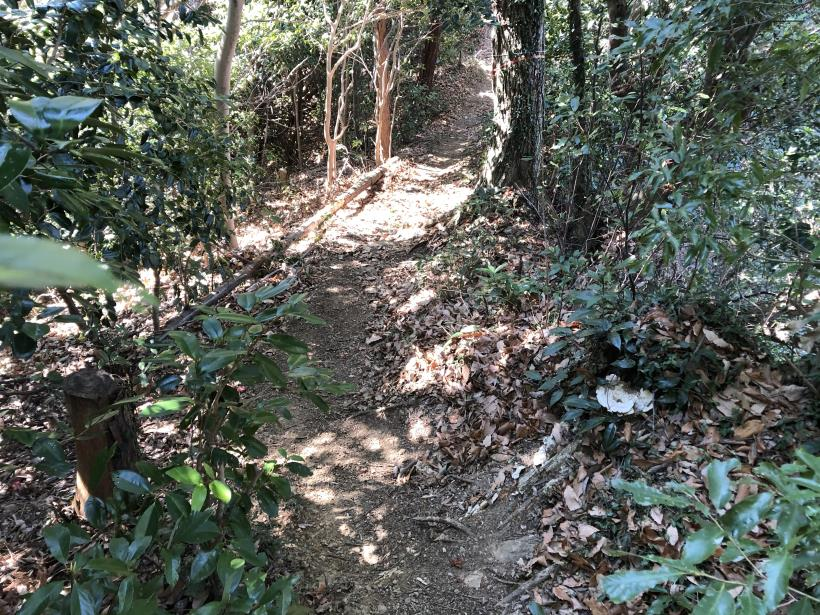 城山登山口から鷹射場24