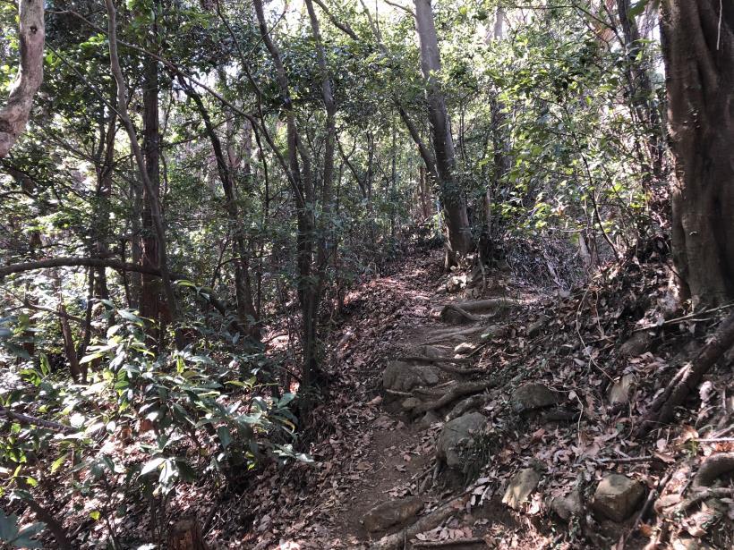 城山登山口から鷹射場28