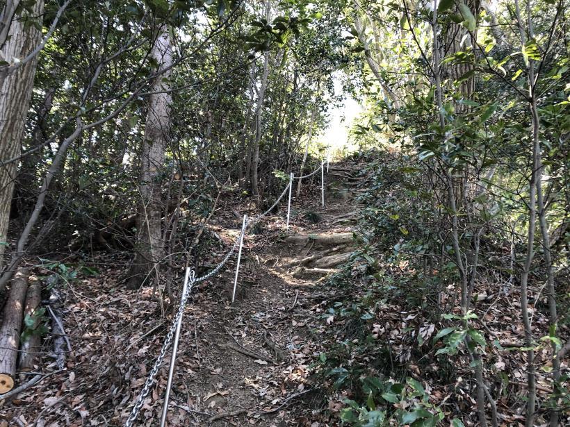 城山登山口から鷹射場30
