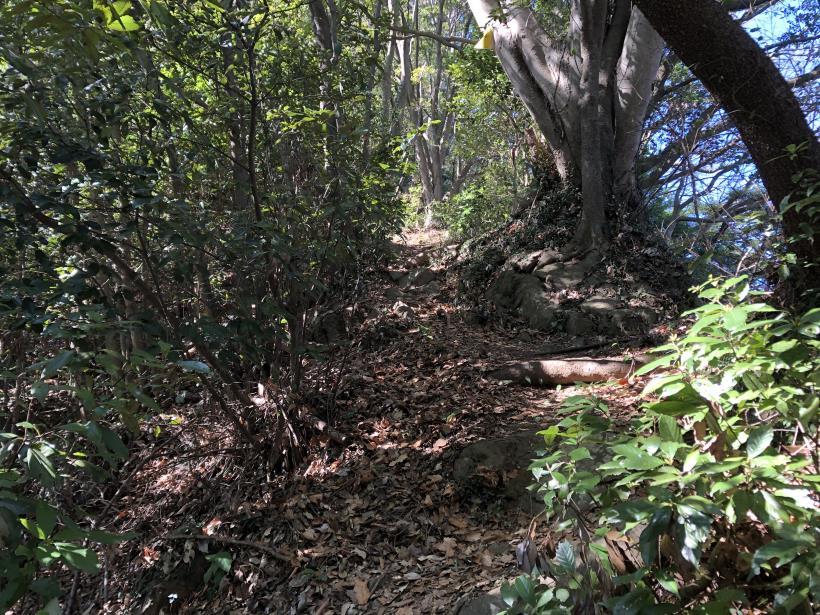 城山登山口から鷹射場35